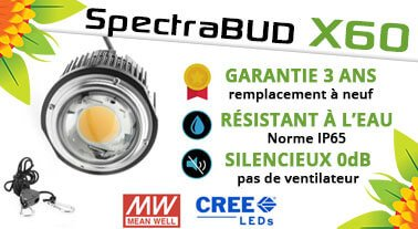 Bloomled Lampe Horticole Led Pour La Culture En Interieur De