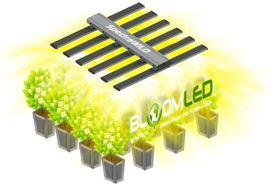 SpectraWILD eclairage horticole led pour serres horticultures et cultivateurs en interieur