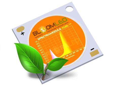 LED Multi-Chips horticole pour plantes