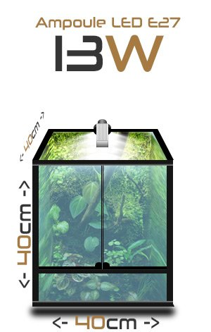 ampoule terraled 13w eclairage led pour terrariums terraled. Black Bedroom Furniture Sets. Home Design Ideas