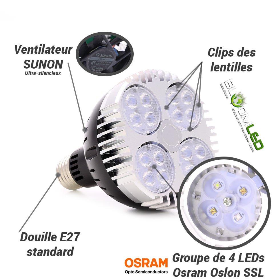 Ampoule horticole LED SpectraBULB X30 floraison plantes en intérieur