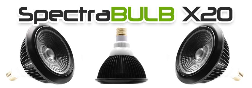 Ampoule horticole LED E27 SpectraBULB X20
