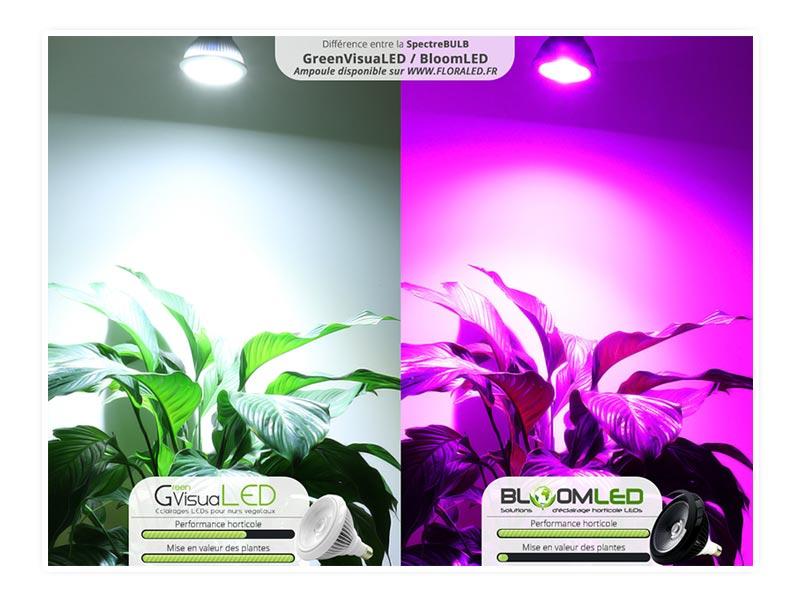 Ampoule horticole LED SpectraBULB