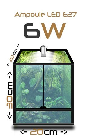 ampoule terraled 6w eclairage led pour terrariums terraled. Black Bedroom Furniture Sets. Home Design Ideas