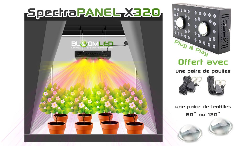 Box de culture réctangulaire pour lampe horticole led spectrapanel x320