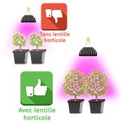 Lentille horticole led performante
