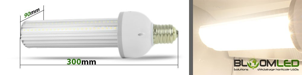 Taille ampoule horticole led culture en interieur box de culture