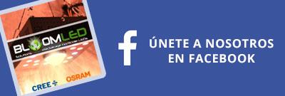 facebook bloomled led horticole culture interieur croissance floraison