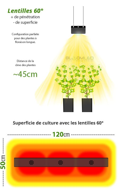 superficie de culture lampe horticole led eclairage culture plantes interieur bloomled spectrab2g